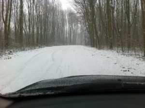 driver's view out the bonnet. Snowy forest.